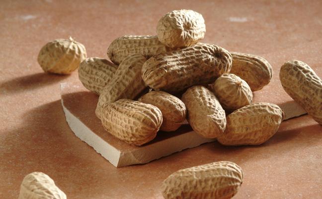 virginia-peanut-in-shell
